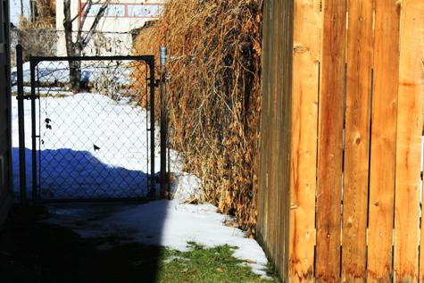 Feb-23-melting-snow